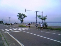 Image2431.jpg