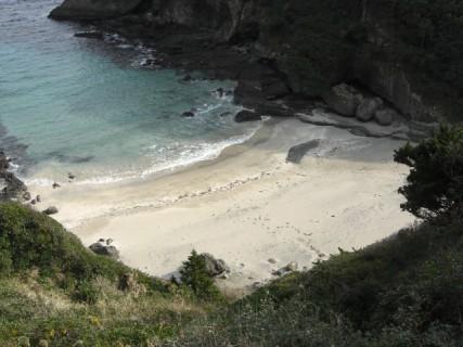beach8sandski
